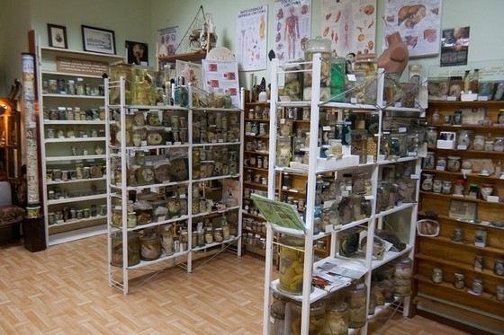 Музей греха в Тамбове обнажает человеческие пороки