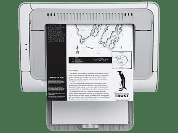 Черно-белая печать дешевле