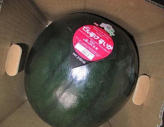 Необычный арбуз «Дэнсуке» продается только на аукционах