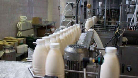Украинские сыры и молоко попали в России под запрет