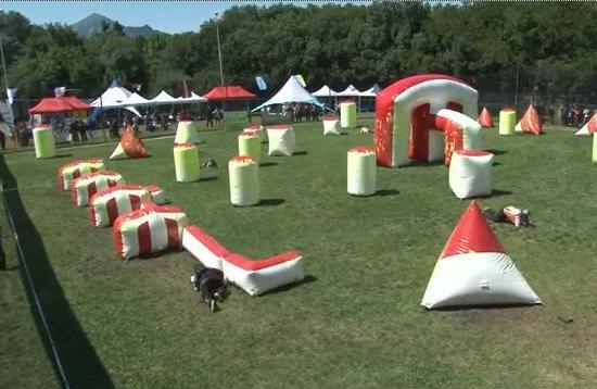 В Пятигорске готовятся к Международному турниру по спортивному пейнтболу