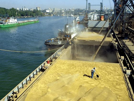 Доставка зерновых с помощью морского сухогруза
