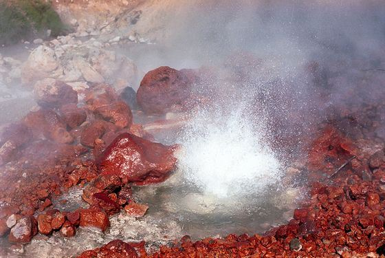 Valley of Geysers in Kamchatka shakes imagination
