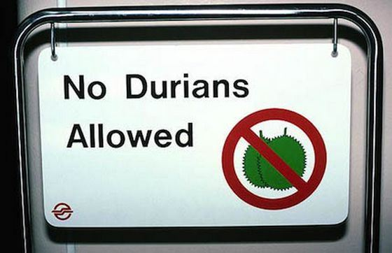Из-за своего резкого запаха дуриан запрещен в общественных местах
