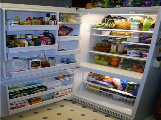Холодильник - жизненно необходимая вещь