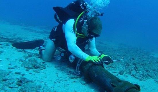 Google защитит кабели на дне Тихого океана от акул