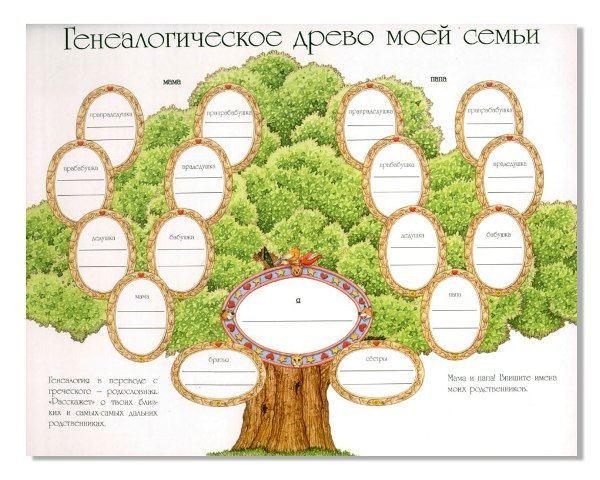 Генеалогическое древо можно составить самому
