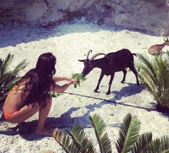Солистка Serebro укротила козла