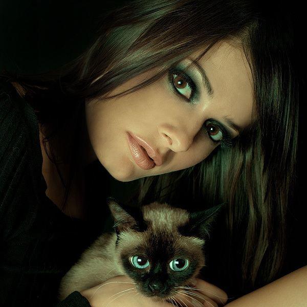 В Турции любят кошек