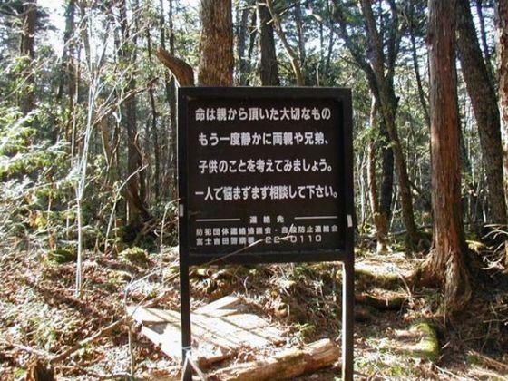 У входа в «Лес самоубийц» в Японии висят предупреждения об угрозе