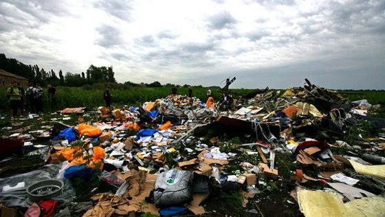 Авиакатастрофа под Донецком - большая загадка последнего времени