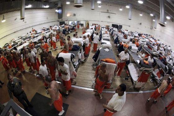 Самые необычные и дорогие исследования были посвящены тюрьмам