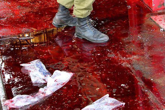 Жуткий «Кровавый дождь»