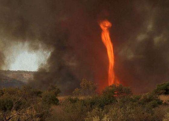 Редкий снимок страшного огненного вихря