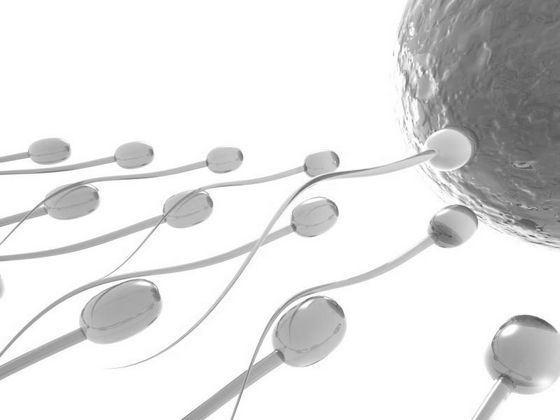 Необычной аллергией на сперму страдают 12% женщин