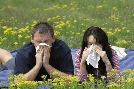 Аллергия на людей тоже встречается