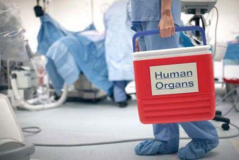 В Совфеде предложили указывать в паспорте согласие на донорство органов