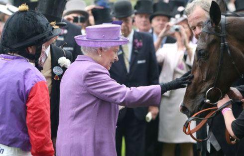 Лошадь Елизаветы II дисквалифицировали за морфин
