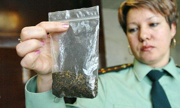 Госдума решила среагировать на ситуацию с синтетическими курительными смесями