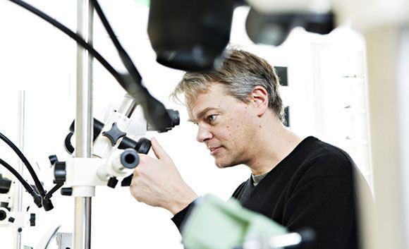Эдвард Мозер, один из лауреатов Нобелевской премии в области физиологии и медицины