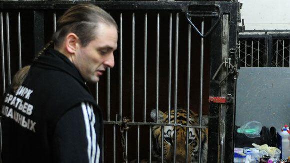 Аскольд Запашный подвергся нападению тигра