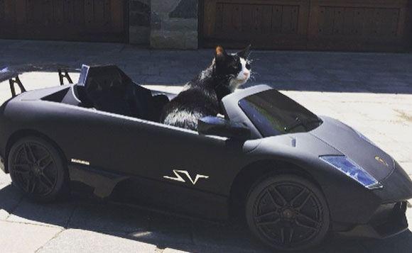 Deadmau5 ����� ������ ���� Lamborghini