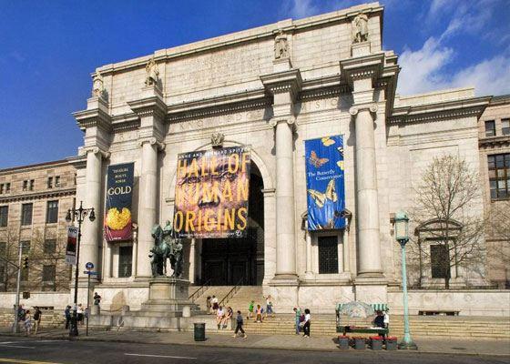 Важной достопримечательностью Музея Естествознания является его библиотека