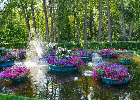 Многие парки в Москве живут естественной жизнью, которую им подарила природа