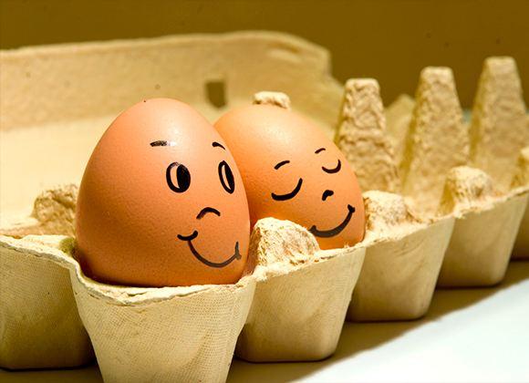 Куриные яйца – очень важный продукт для населения многих стран