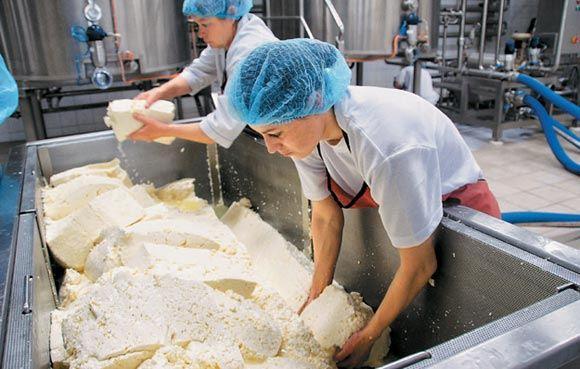 В Сибирском НИИ сыроделия создали российские моцареллу и маскарпоне