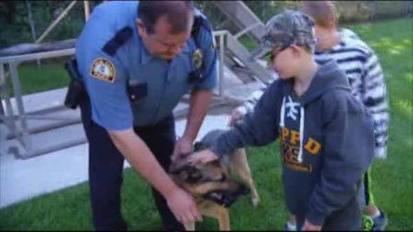 Мальчик из США передал личные средства на бронежилеты для полицейских собак
