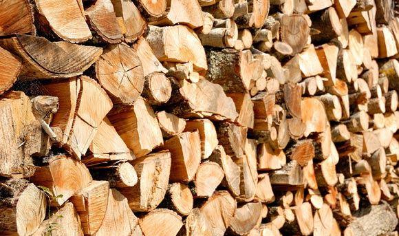 Волонтеры Тверской области собирают деньги на дрова для малоимущих селян