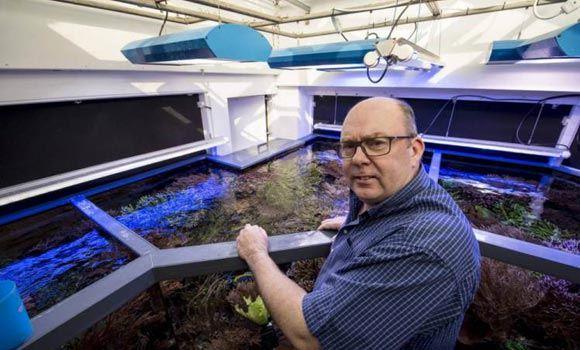 Американец Мартин Лакин установил дома огромный аквариум