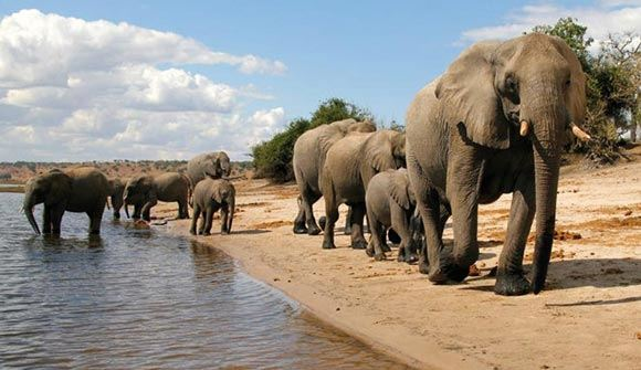Ботсвану назвали главным туристическим направлением 2016 года