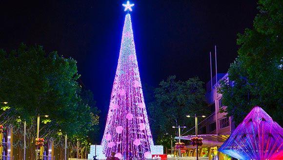 В Австралии поставили рекорд по количеству огней на рождественской елке