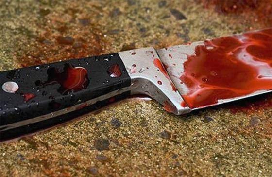 15-летняя школьница вместе с другом зарезали родителей
