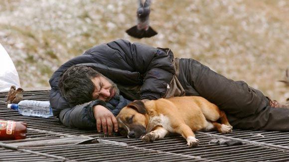 В Санкт-Петербурге откроется выставка бездомных фотографов