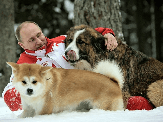 Владимир Путин с домашними питомцами