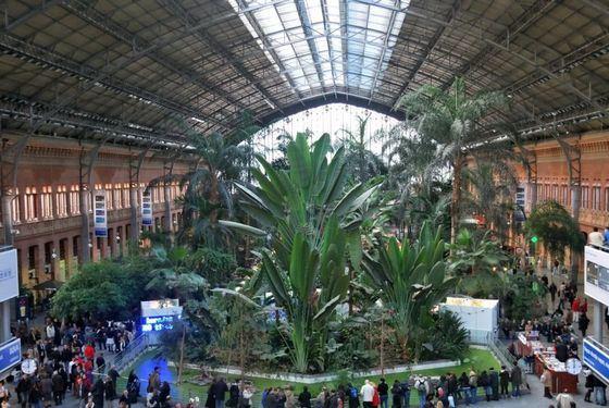 Центральный вокзал Мадрида - место, где прогремел взрыв