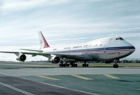 Теракт на борту Боинга-747 убил не только пассажиров