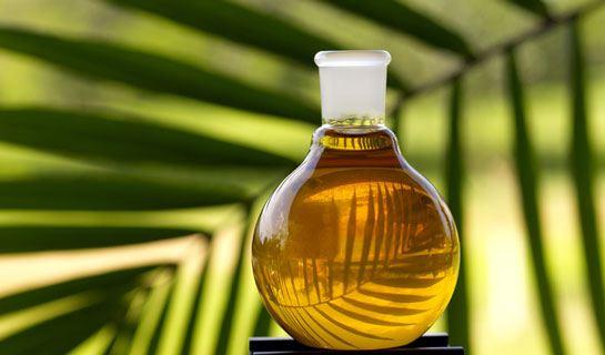 Пальмовое масло содержится во многих продуктах массового потребления