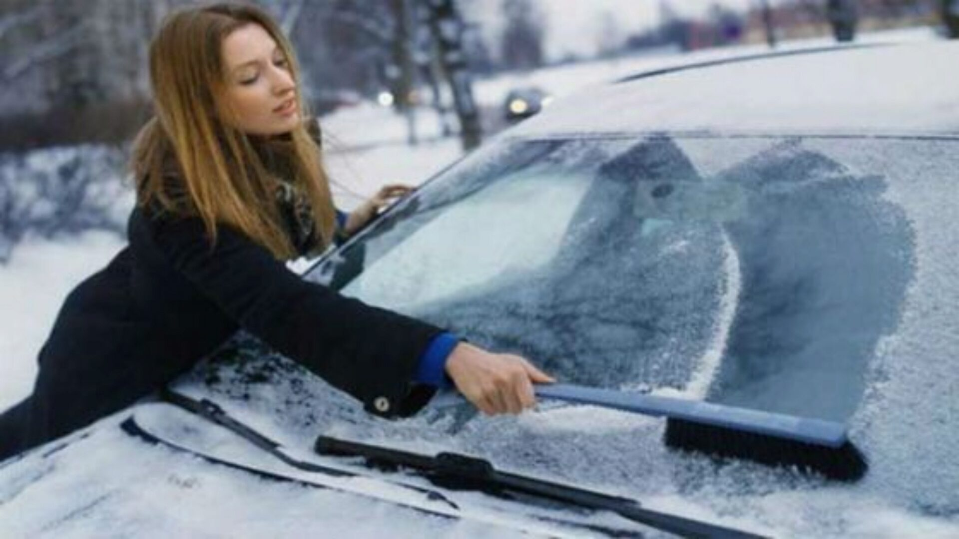 Мягкой щеткой можно быстро смести снег со стекла