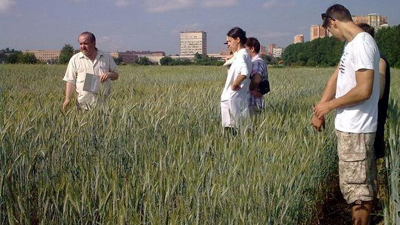 На полях Тимирязевской академии проводятся эксперименты и обучение студентов
