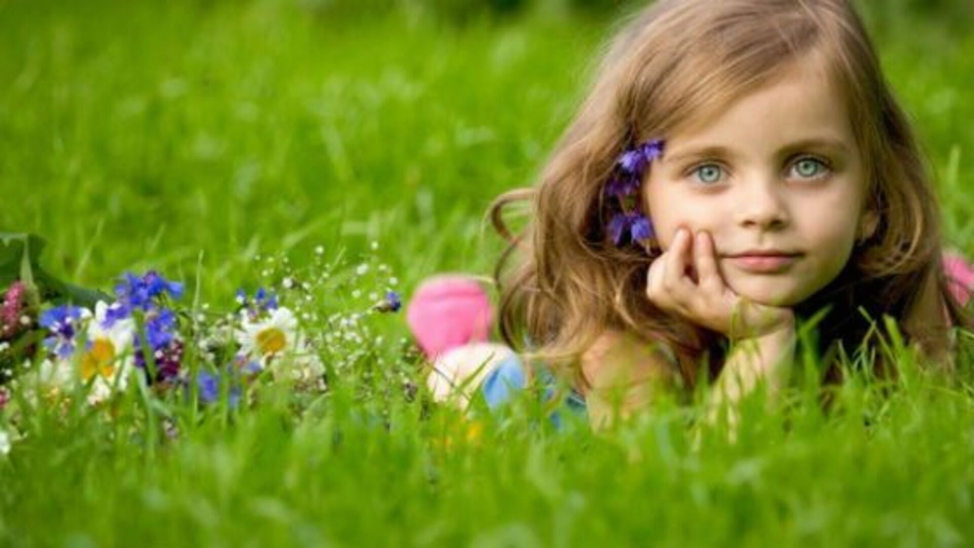 Не разрешайте ребенку бегать по высокой траве