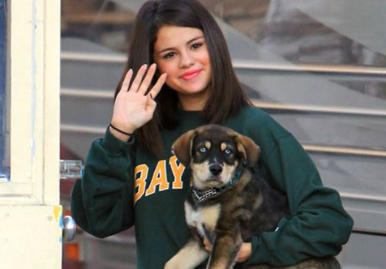 Selena Gomez and her puppy Bailor
