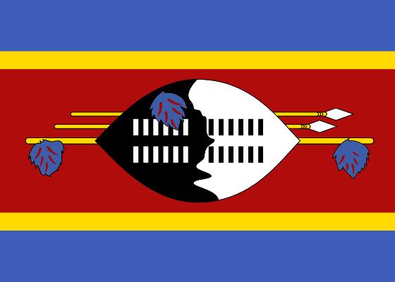 8 Свазиленд - 33,8
