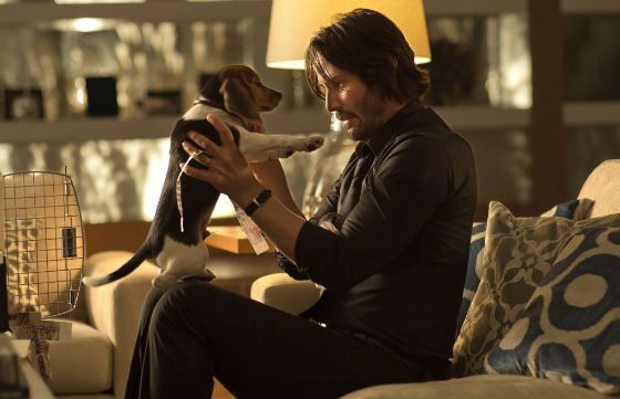 "A snapshot from ""John Wick"""