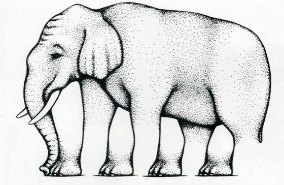 Невозможный слон Шепарда
