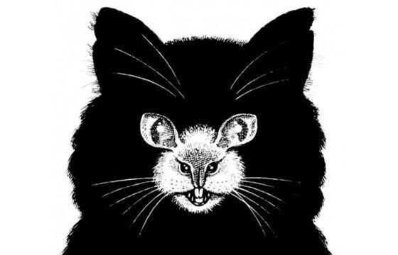 Кошка или мышь?