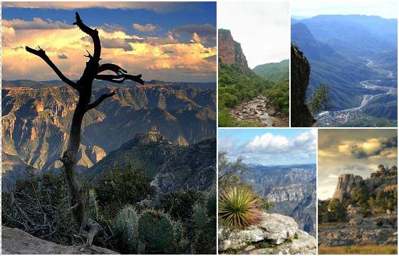 Медный каньон индейцы называли Тараумара